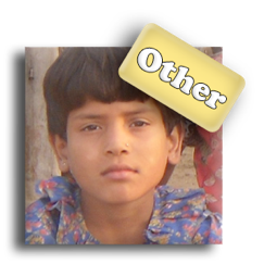 other-2